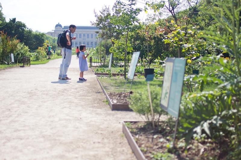 Paris Insider // Jardin des Plantes