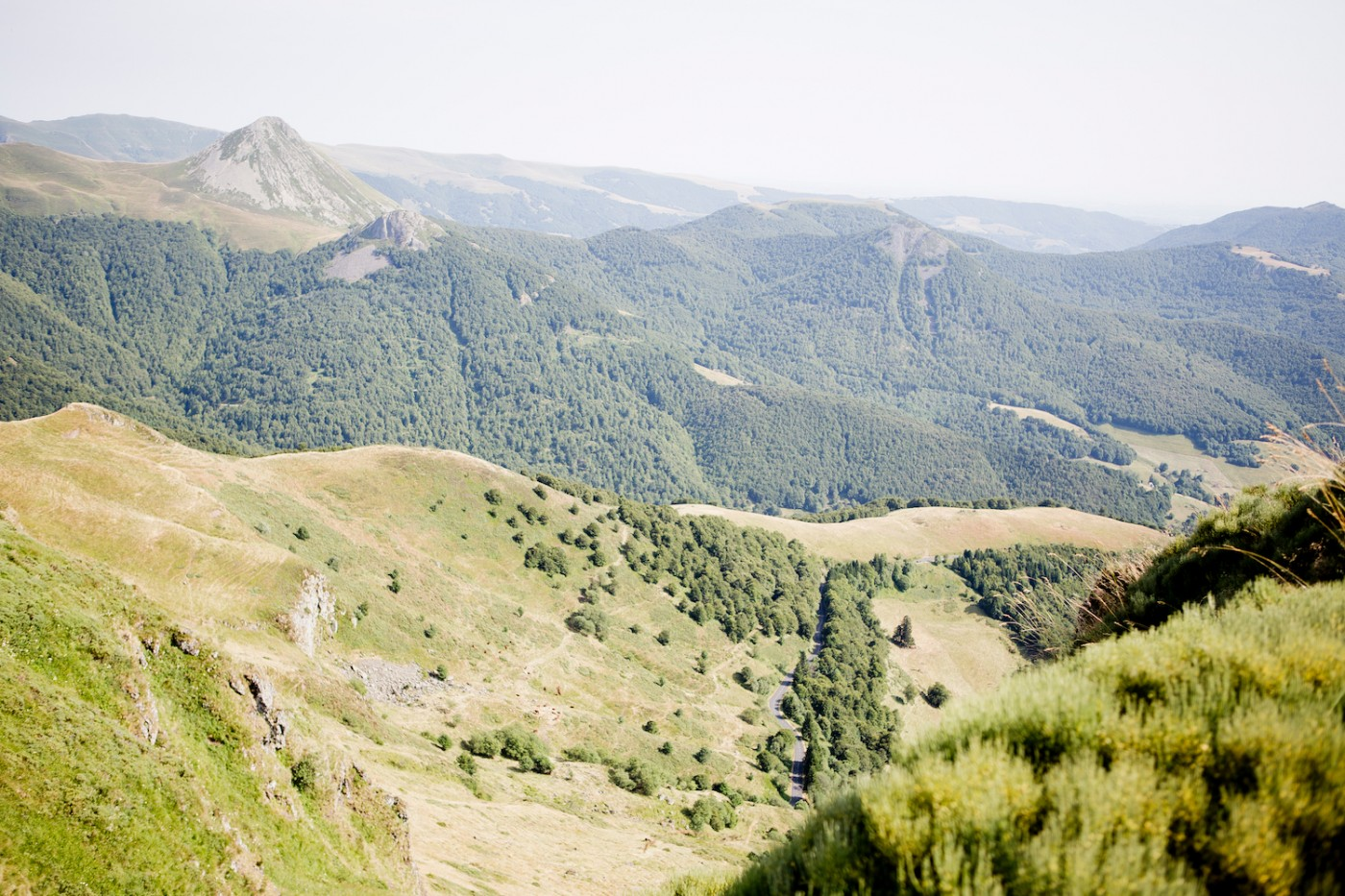 The Golden Bun | Tour de France, Monts du Cantal, Puy Mary, Auvergne, Cantal, Holiday in France