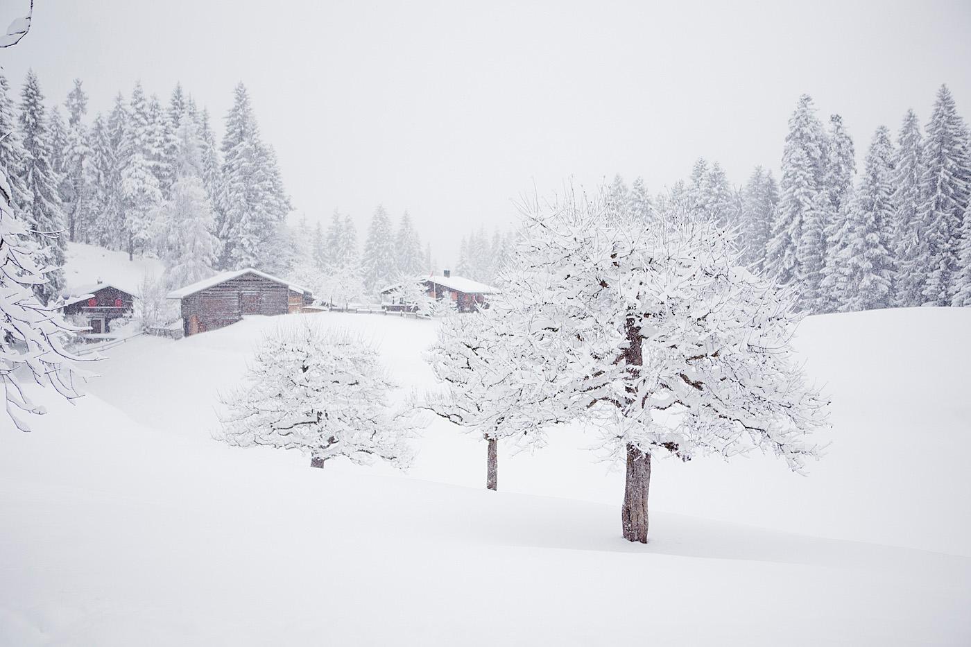 Kulinarik Trail Laax / Flims |Skigebiet LAAX, LAAXisniceyo, Graubünden, skiing in LAAX, culinary trail LAAX/Flims, ski weekend LAAX, winter holiday, winter in Switzerland