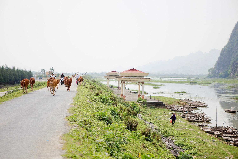 www.thegoldenbun.com |Vietnam Rundreise Ninh Binh - Vietnam round trip