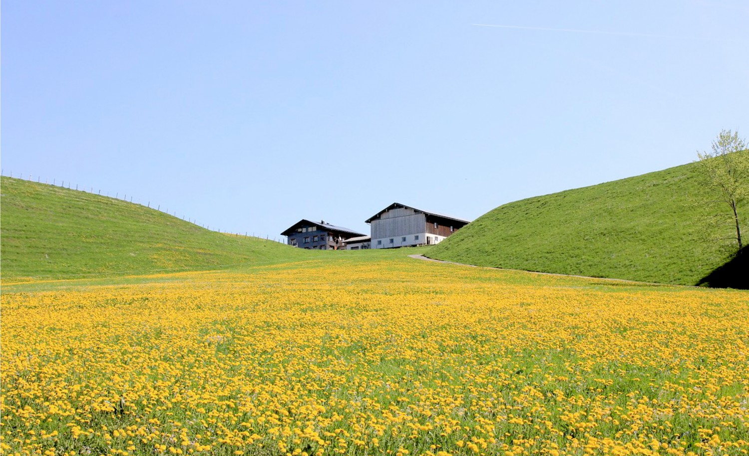 Holistic Life Feeling at HUBERTUS Alpin Lodge & Spa in Allgäu