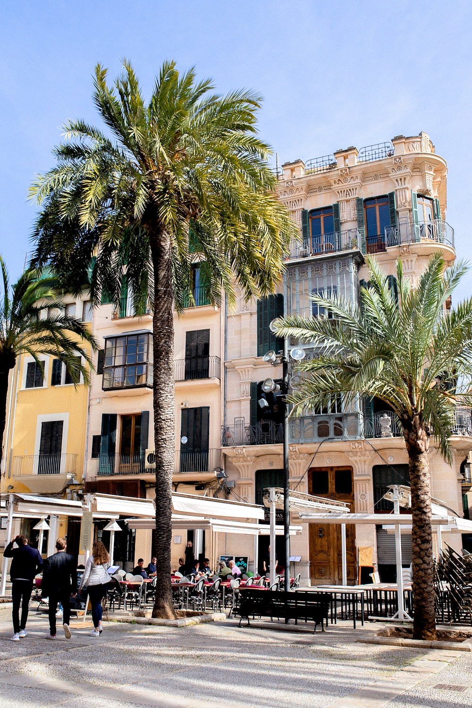 www.thegoldenbun.com _ Mallorca Nebensaison Tipps - Mallorca im März - Mallorca low season
